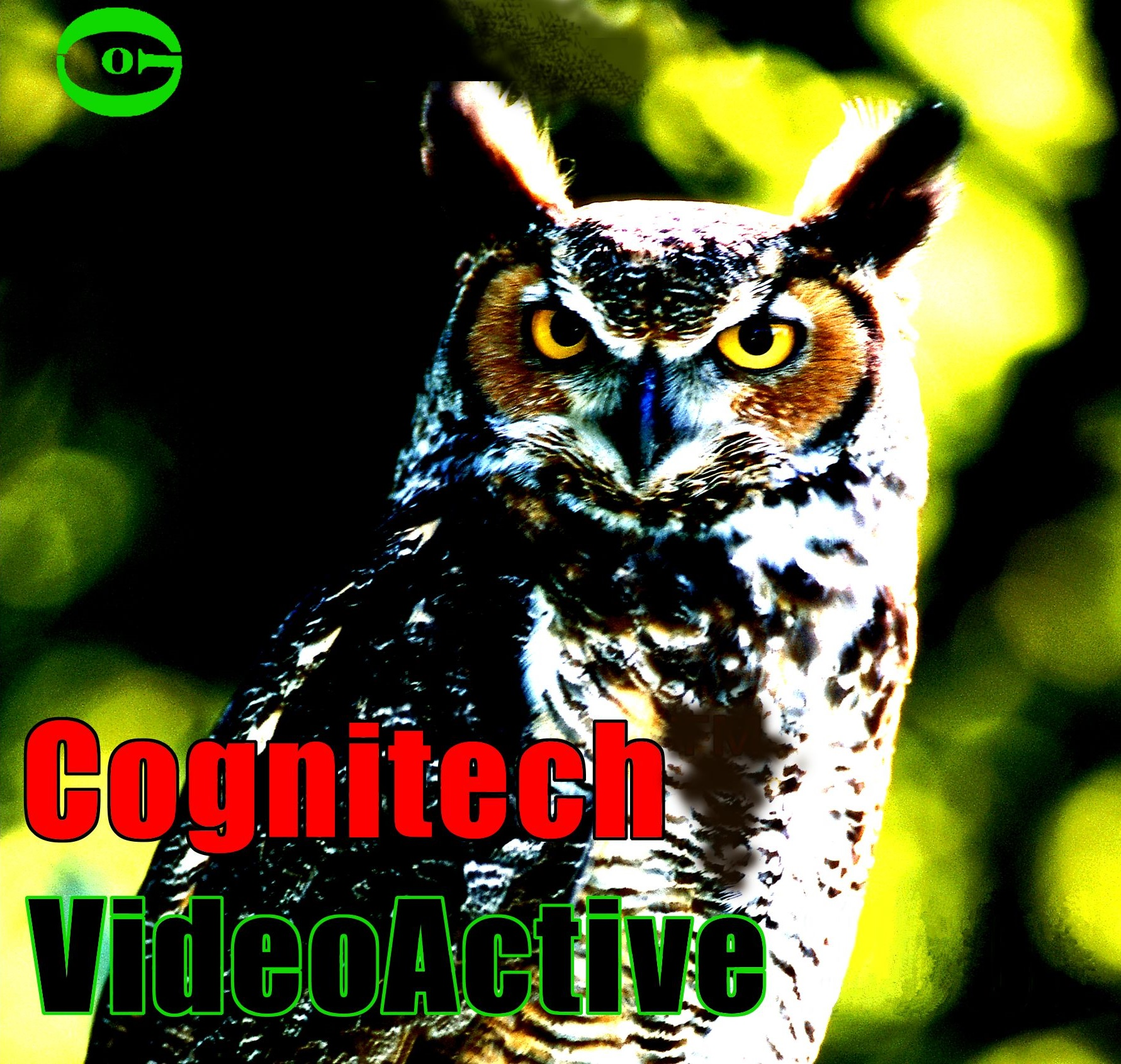 Cognitech VideoActive Software Logo